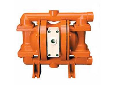 """威尔顿 P200 金属泵 25 mm (1"""")"""